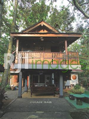 Rumah panggung bergaya tropis