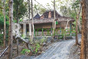 Sulaman Eksotik Kayu & Batu Omah Jowo Heru Suprihantono
